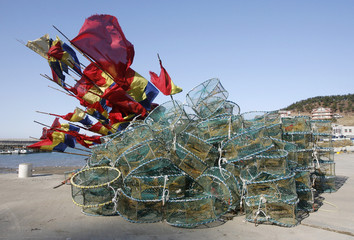 Crab pots are stacked on a pier at a port in Taean