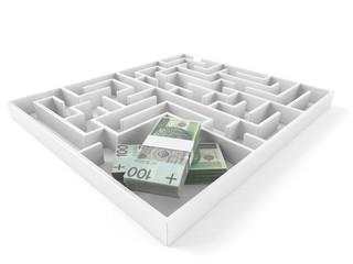 Maze with polish money