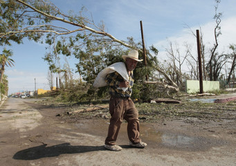 A man walks past fallen trees after Hurricane Jimena hit on Wednesday in Constitucion