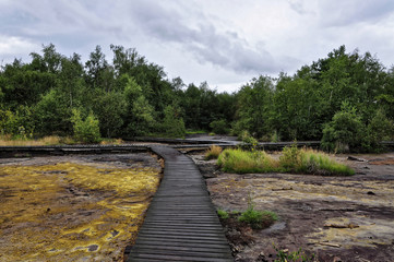Wooden path wet of rain