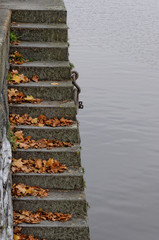 Leaves on the steps in the river water