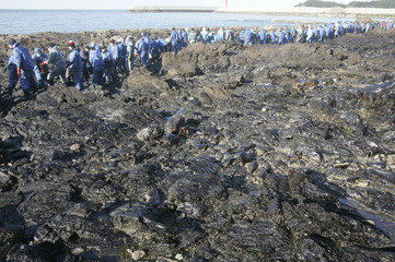 Residents and volunteers work to remove crude oil spilled from oil tanker Hebei Spirit, on a beach in Taean