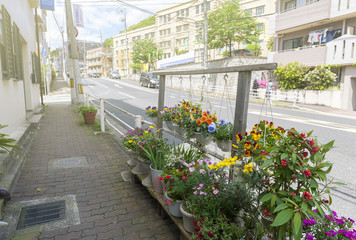 Colourful decorating flowers on footpath in a city in Japan