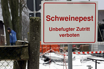 "Sign reading ""Swine Fever - No trespassing"" is placed near a farm where swine fever had been found in Haltern"
