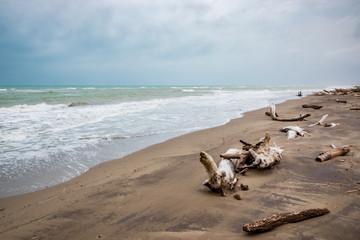 Plage du Parc naturel régional de la Maremma en Toscane