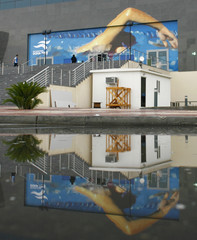 People start to arrive at the swimming venue that is seen reflected in a large puddle of rain water at the 15th Asian Games in Doha