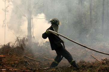 A firefighter pulls a hose during a forest fire in the coastal town of Placilla
