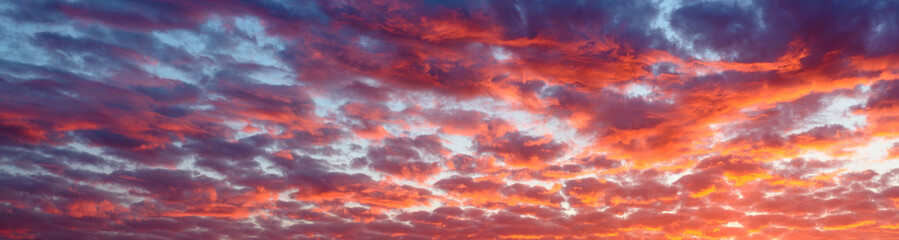 Panoramic view the blood red evening sky and amazing clouds. Wall mural