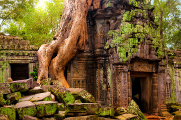 Poster Historical buildings Ta Prohm temple. Ancient Khmer architecture under the giant roots of a tree at Angkor Wat complex, Siem Reap, Cambodia.