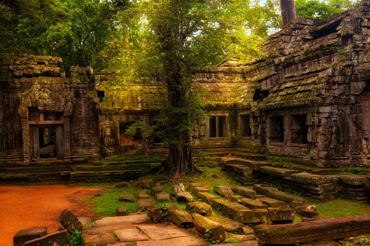 Ta Prohm temple. Ancient Khmer architecture at Angkor Wat complex, Siem Reap, Cambodia.