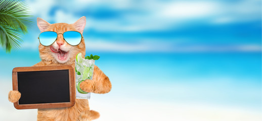 Cat wearing sunglasses relaxing in the sea background.  Cat holds blank blackboard .