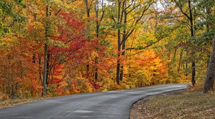 Autumn Colors Of DeSoto State Park