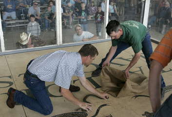 Grady prepares to pick up a rattlesnake and throw it into the burlap sack held by his sacking partner Beardon while competing in the the Taylor Rattlesnake Sacking Championships in Taylor