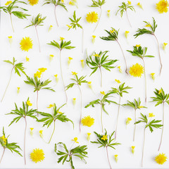 Floral pattern abstract background.