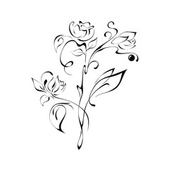 ornament 11. stylized flowers on a white background
