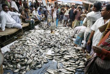 Traders display fishes at the Soarikhat wholesale market in Dhaka