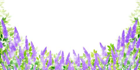 ラベンダー ハーブ 風景 背景