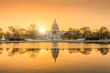 Fototapete - The United States Capitol Building in Washington DC