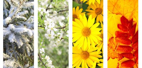 Four seasons of year