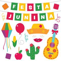 Festa Junina vector design elements set