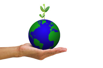 Man's hand holding growing green sprouts from globe on white background, environment concept