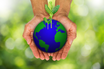 Man's hands holding earth globe with green sprouts growing on blurred bokeh background, environment concept