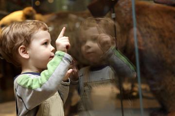 Curiosity child in museum Fototapete