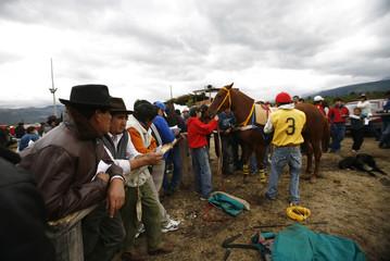 "Gauchos look at a horse before a race during the ""Fiesta del Lenador"" in Mallin Ahogado"