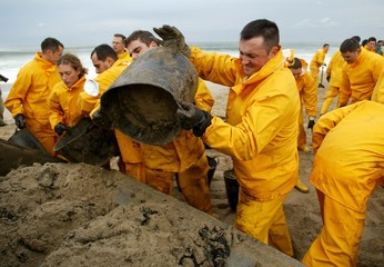 SPANISH SAILORS POUR BUCKETS OF OIL-SOAKED SAND INTO A BULLDOZER AT ABEACH IN NORTHERN SPAIN.