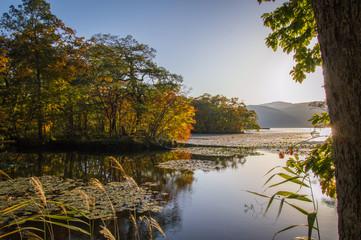 Sunset in Onuma Quasi National Park, Onuma Lake, Hokkaido, Japan