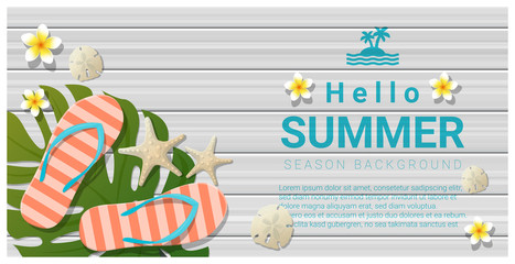 Hello summer background with sea elements on wooden board , vector , illustration
