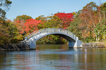 Bridge in Onuma Quasi National Park, Hokkaido, Japan