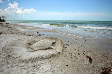 Sand sculpture turtle on Fort Myers Beach, Florida