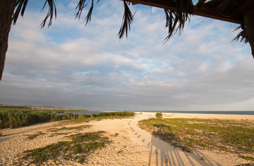 View from Palapa / shelter / hut of San Jose Del Cabo Lagoon / Estuary nature reserve just north of Cabo San Lucas Baja Mexico BCS