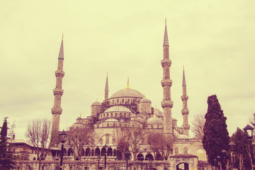 The Mosque in Istanbul