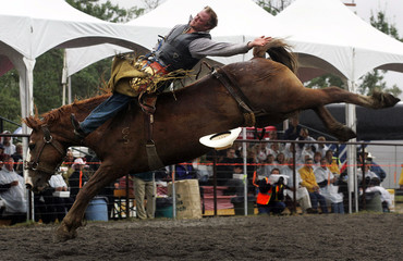 Provincial and territorial leaders watch a bucking bronco during a rodeo in Kananaskis.