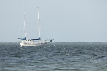 Sailboat Anchored off coast of Dredger Key Sigsbee - Key West Florida