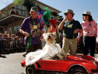 FEATURE MATCHER FOR BC-LIFE-MARDI-PAWS.