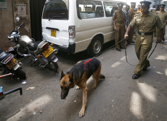 A Sri Lankan police officer uses a sniffer dog while searching for explosive devices around a church after the recovery of a suicide jacket and explosive device at the church in Colombo
