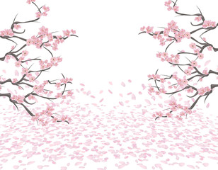 Branches of a blossoming pink cherry on both sides of the picture. Sakura. The petals fly in the wind and lie on the ground. Isolated on white background. illustration