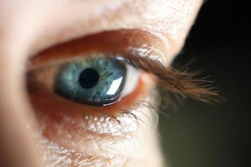 Macro close-up female eye. Beautiful woman eye.