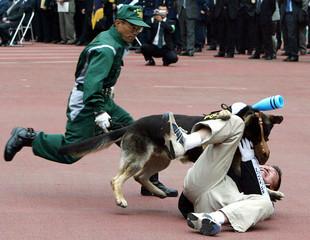 JAPANESE POLICE DOG TACKLES HOOLIGAN IN TRAINING DRILL AT WORLD CUPVENUE IN YOKOHAMA.