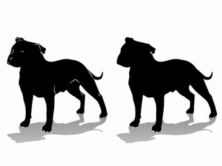 silhouette of a dog, vector draw