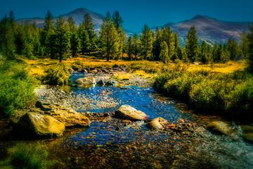 The Tuolumne River runs through Yosemites Tuolumne Meadows