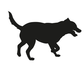the silhouette of a dog is black
