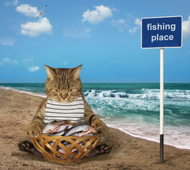 The cat fisher sits beside a basket full of fish on the seashore.
