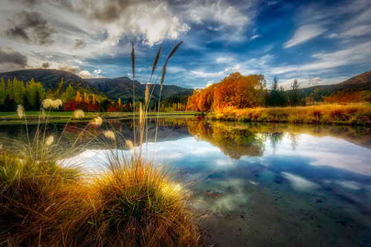 A beautiful pond in Rural New Zealand during Autumn