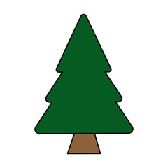 colorful image cartoon pine tree vector illustration