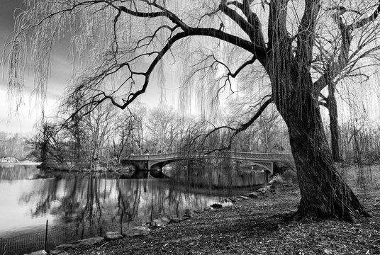 Winter at Bow Bridge Central Park New York