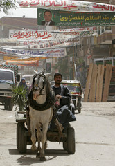 A man rides his cart through a Cairo street adorned with election banners